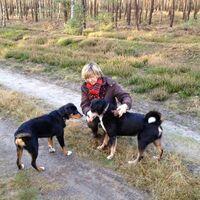 Vermieter: Vermieterin mit ihren Hunden