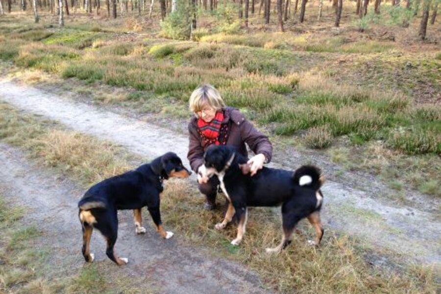 Das bin ich mit meinen Hunden