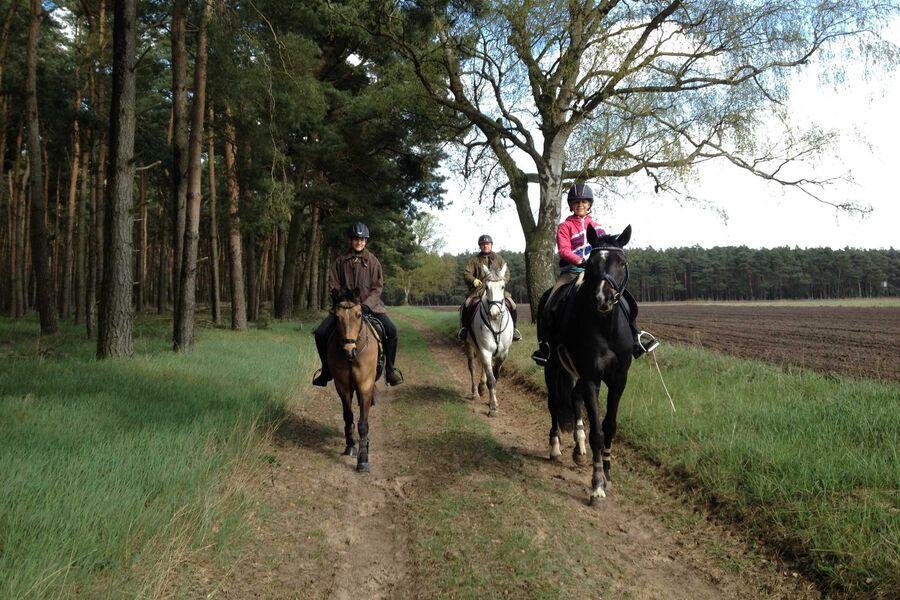 Gäste mit Ihren Pferden