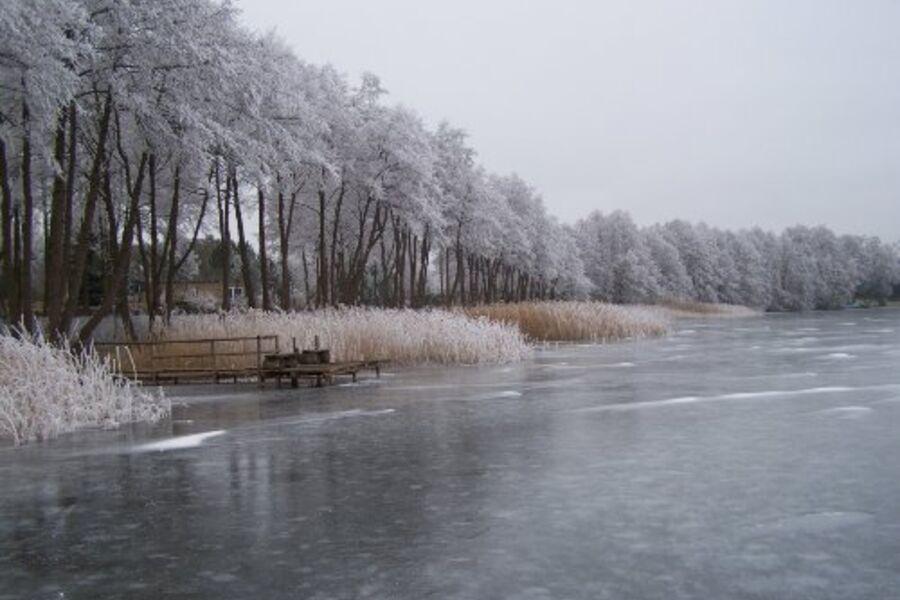 Winter am Holzendorfer See