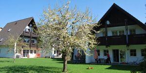 Ferienwohnungen Stricker - Wohnung Typ C in Walkenried - kleines Detailbild