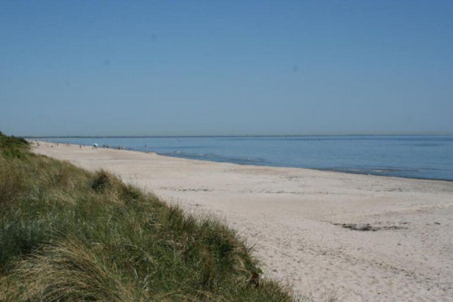 An der Dänische Süd See  mit viel Sonne