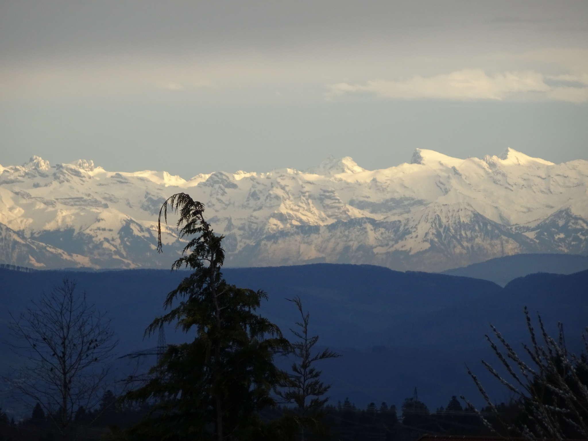 tolle Alpensicht der schweizer Alpen
