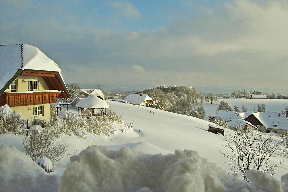 Winter in Bergalingen