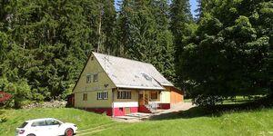 Schwarzwaldferienhaus Rappenloch in Eisenbach (Hochschwarzwald) - kleines Detailbild