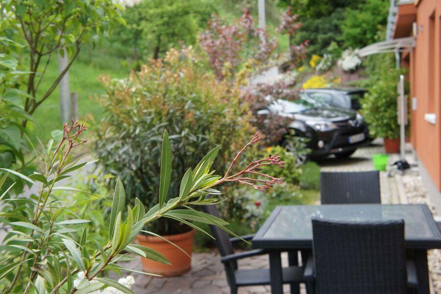 Terrasse und Stellplatz