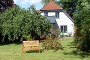 Blick aus dem Garten auf das Haus