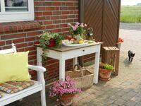 Ferienhof Borcherding - Goldene Wohnung in Süderdeich - kleines Detailbild