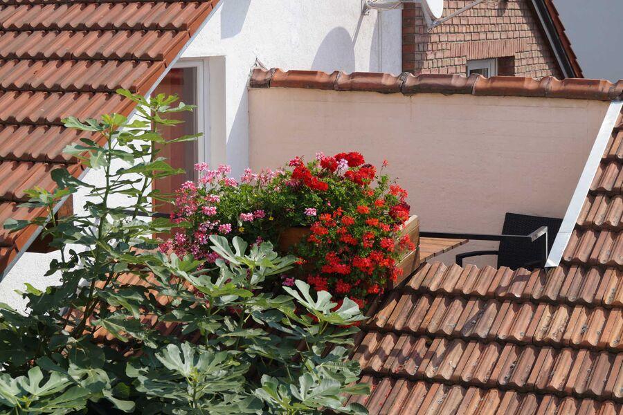 Balkon Schlossberg