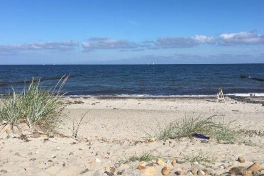 Die Ostsee in ein nur ein paar Schritten