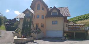 Ferienwohnung 'Am Mühlenbach' in Kappelrodeck-Waldulm - kleines Detailbild