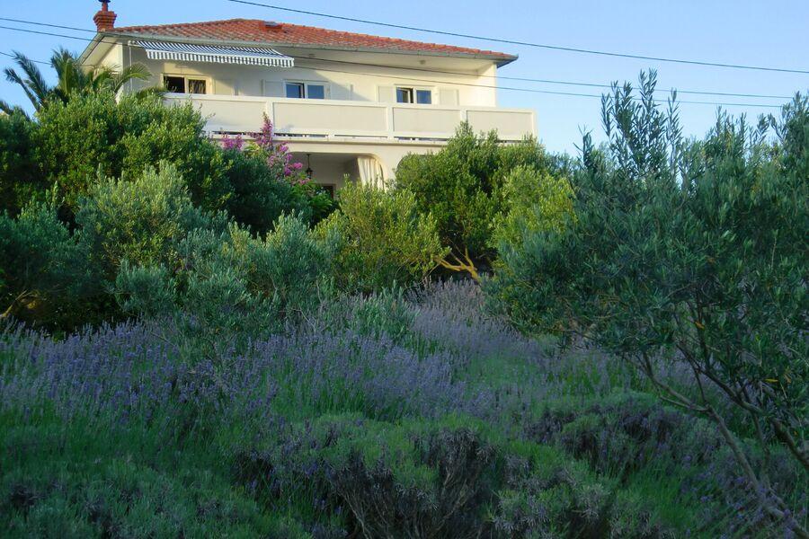 Apartment Maja für 6 Pers.
