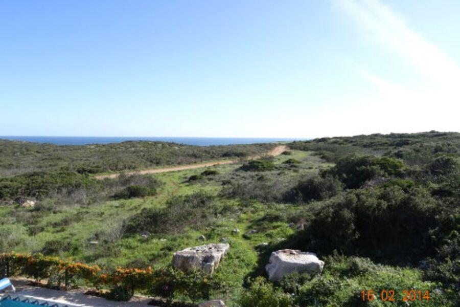 Blick von der Terasse auf den Naturpark