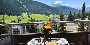Davos Platz - Ferienwohnung Parkareal in Davos - kleines Detailbild