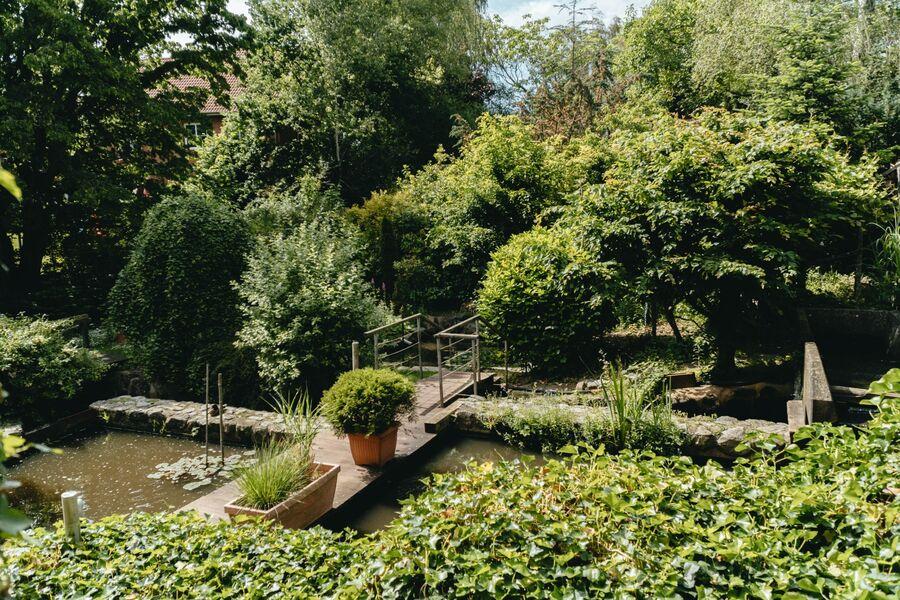 Blick über den Mühlenteich zum Haus