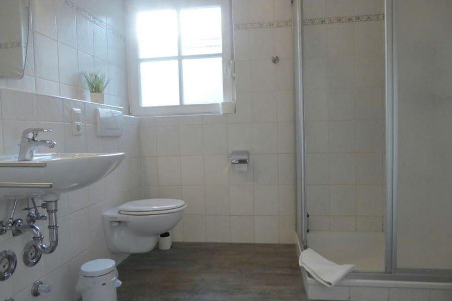das geräumige Duschbad mit WC