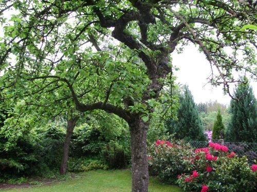 Gartenansicht Süden