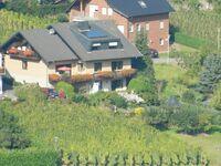 Haus Weber - Ferienwohnung Weingarten in Ellenz-Poltersdorf - kleines Detailbild