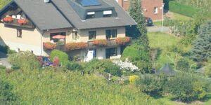 Haus Weber - Ferienwohnung Burg Metternich in Ellenz-Poltersdorf - kleines Detailbild