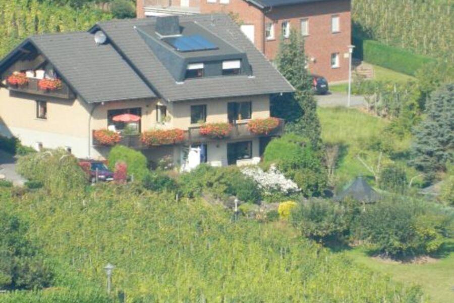 Blick von der Burg Metternich/Beilstein
