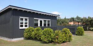 Süd 'Spitze' Strandferienhaus in Gedesby Strand - kleines Detailbild