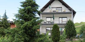 Ferienwohnung Haus Berghof in Neumagen-Dhron - kleines Detailbild