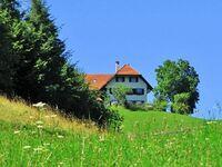 Ferienwohnung 'Auf dem Burstel' in Kleines Wiesental - kleines Detailbild
