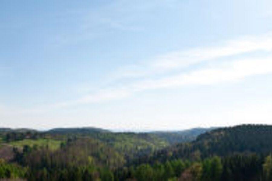Panoramablick üb Oberharz / nähe Brocken