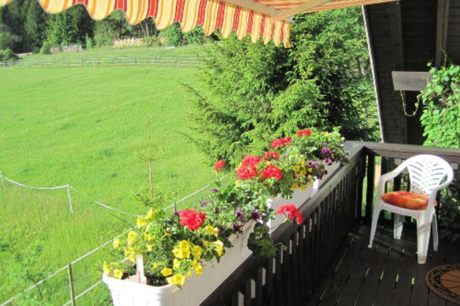 Ihr Balkon mit Blick auf die Weide