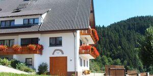 Ferienhaus Müllerbauernhof in Oppenau - kleines Detailbild