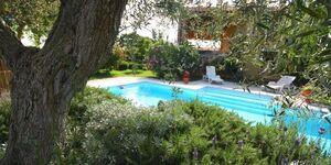 Villa Elvira in Castagneto Carducci - kleines Detailbild
