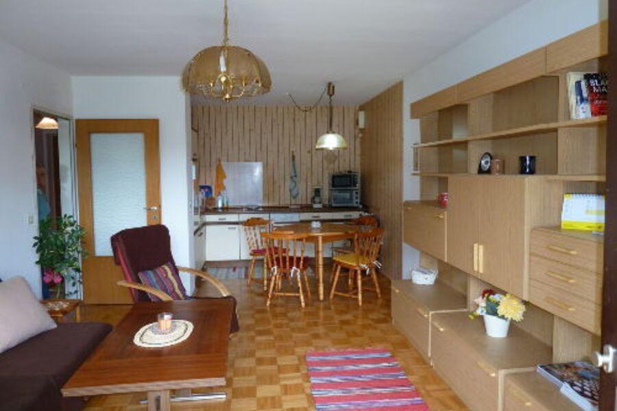 Wohnraum mit Ausziehcouch und Küche