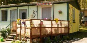 Ferienhaus Zum Strand - (Bung. 8) in Dranske - kleines Detailbild