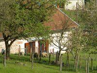 Vogesen Landhaus in Faucompierre - kleines Detailbild