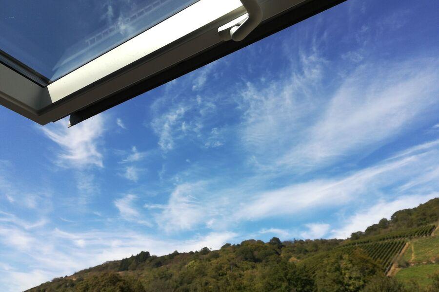 Blick aus der Wohnung auf den Rhein