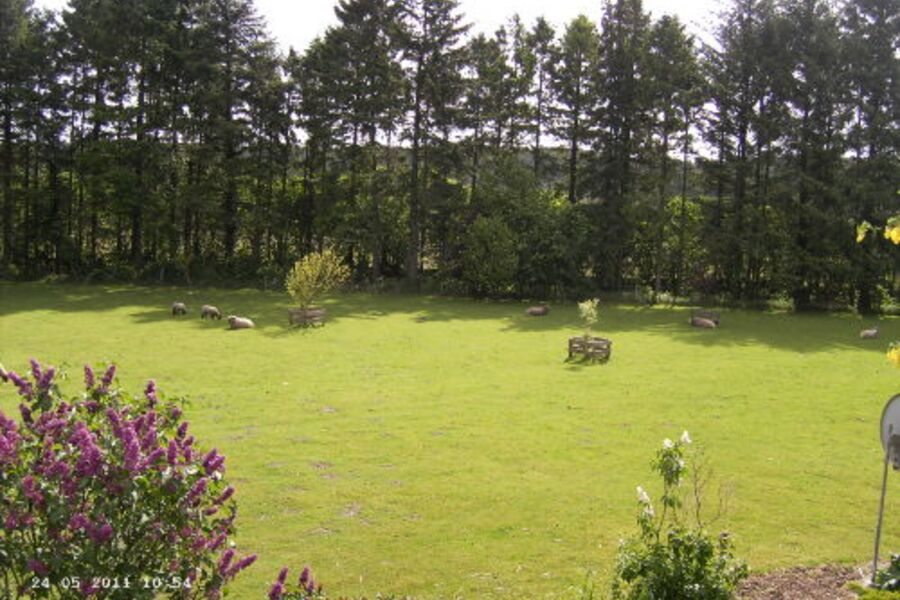 Blick ins Grüne - Umgebung