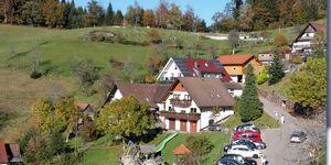 Ferienwohnungen Maria Bächle in Bad Peterstal-Griesbach - kleines Detailbild