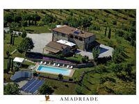 Amadriade Agritourism - Ferienwohnung Camelia in Petroio - kleines Detailbild