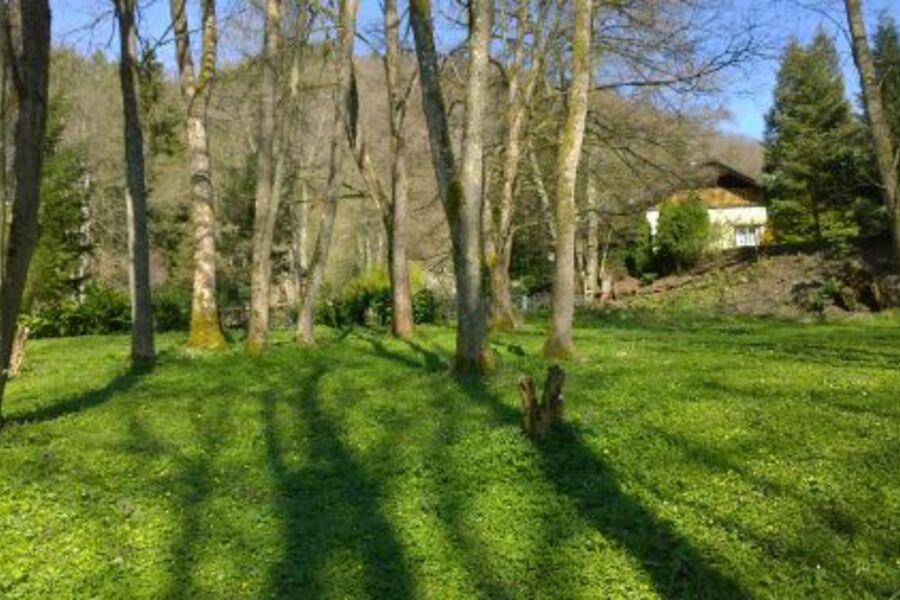 Blick von der Waldwiese zum Ferienhaus