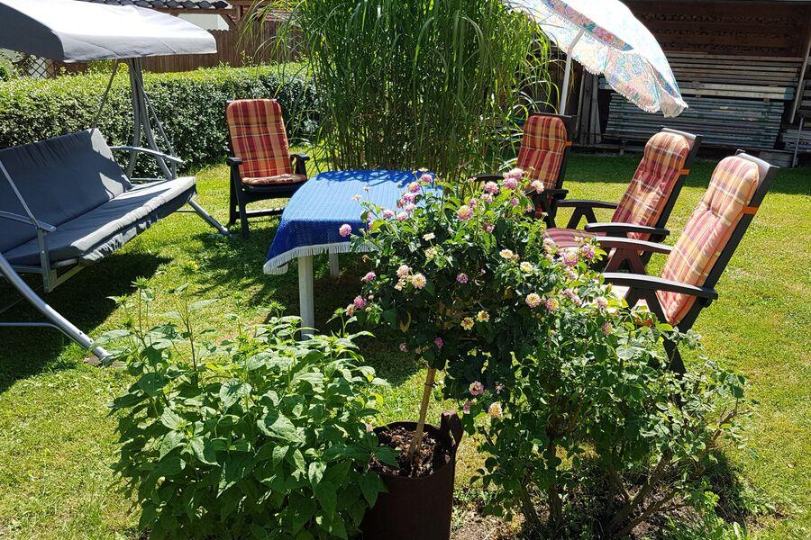 Der Garten hinter unserem Haus
