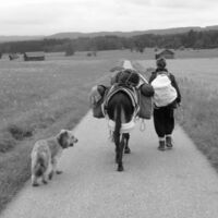 Vermieter: Wanderung mit unseren Eseln nach Italien