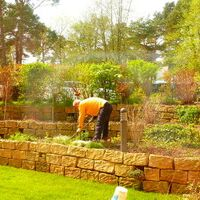 Vermieter: Ihr Vermieter bei der Gartenpflege