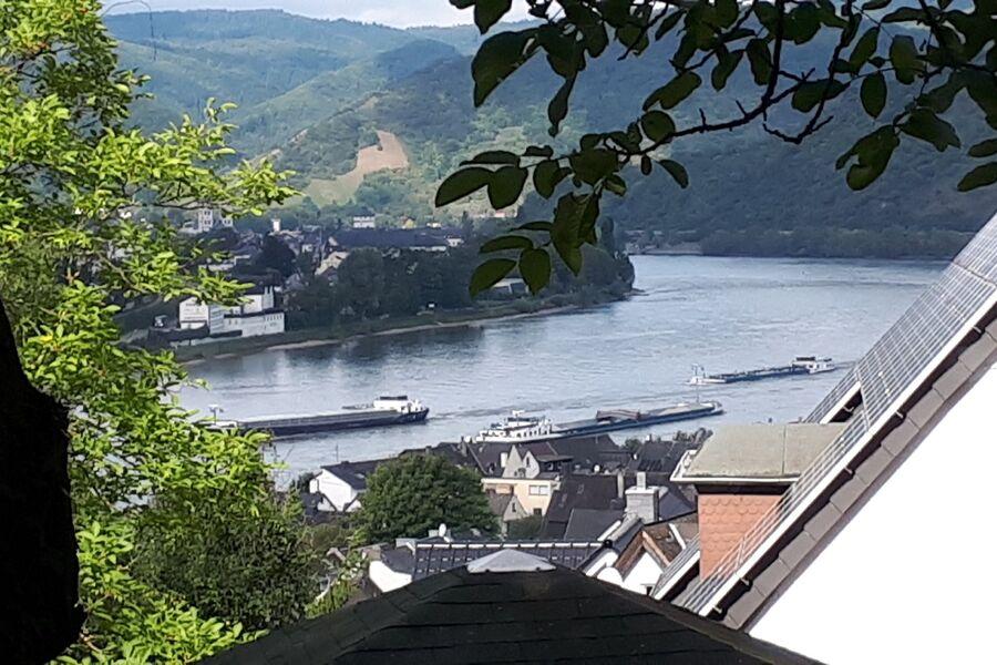 Blick aus dem Wohnzimmer auf den Rhein