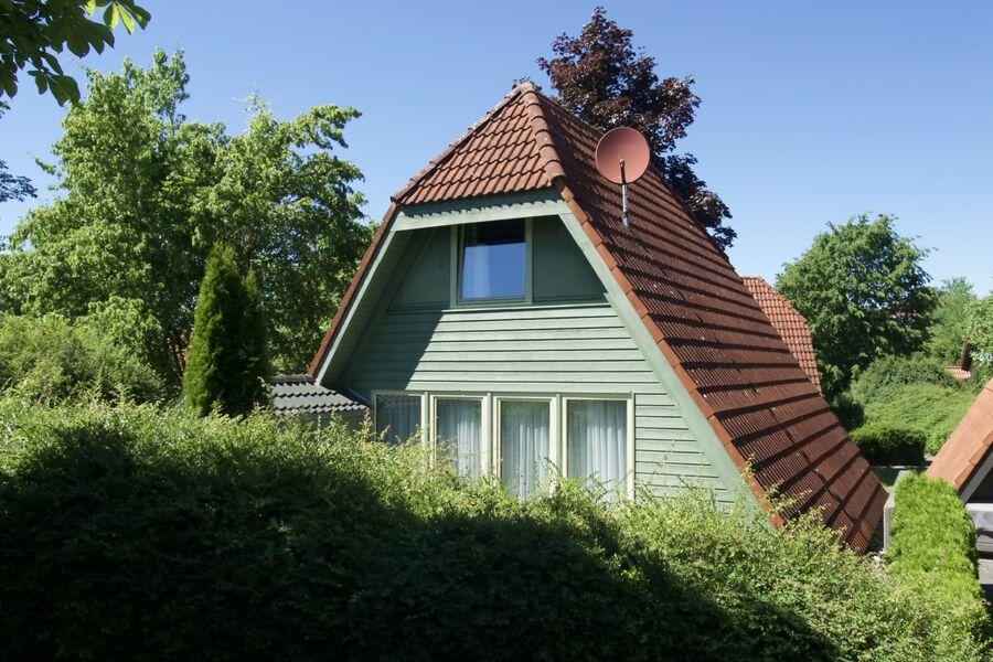 Grünes Nurdachhaus