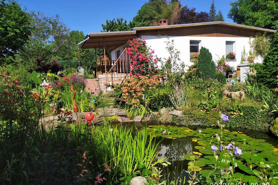 Terrassenblick zum Gartenteich