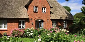 Haus Wilke in Borgsum - kleines Detailbild