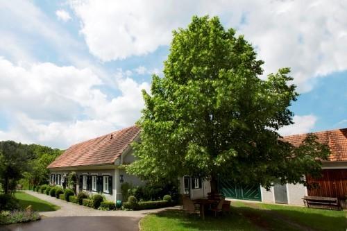 Lindenhof am Steinberg - Ferienwohnung Morgenrot
