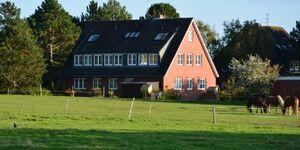 Haus Pax - Appartement 1 in Süddorf - kleines Detailbild