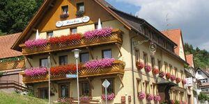 Gasthof Zum Hirschen-Benz - Ferienwohnung 1 in Löffingen - kleines Detailbild