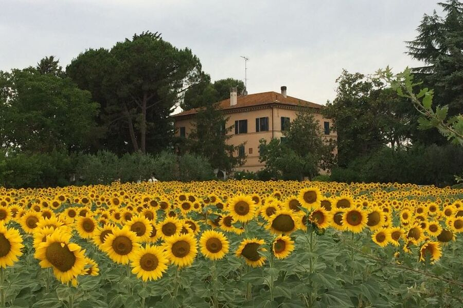 Villa Morea Hauptansicht